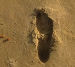 """Photo of a footprint in the sand, """"To prove I was there"""""""